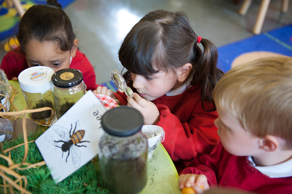EYFS Children insects